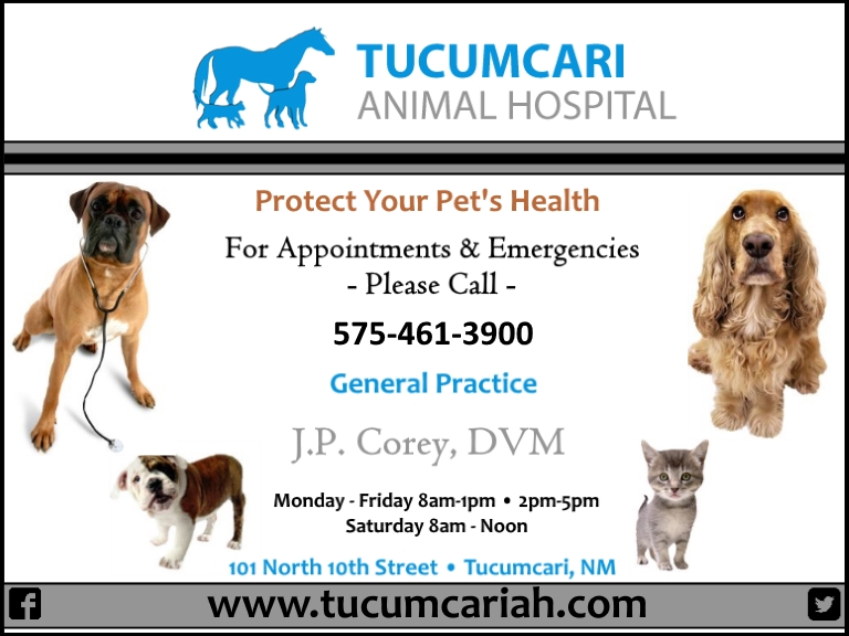 animal hospital, quay county nm