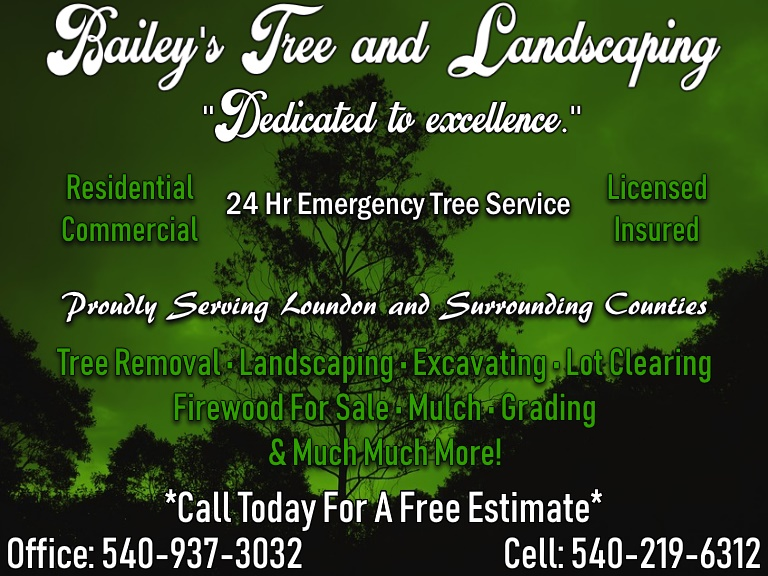TREE SERVICE, LOUDON COUNTY VA