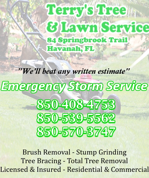 TREE SERVICE, LEON COUNTY FL