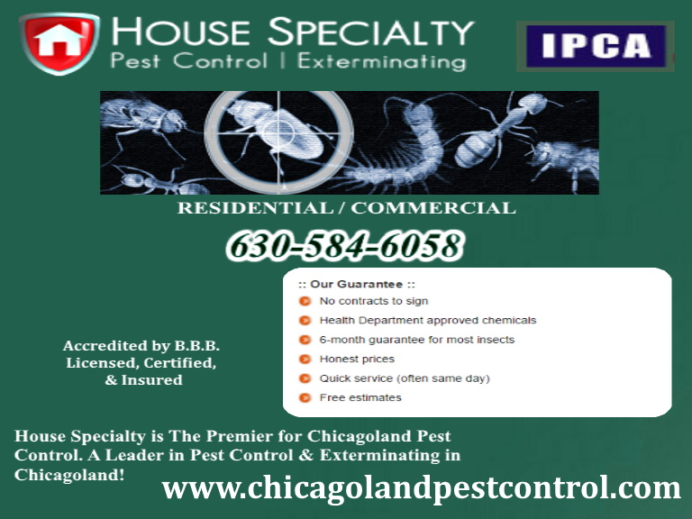 house specialty pest control elgin il