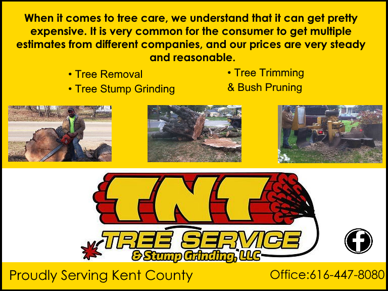 tnt tree service kent county mi