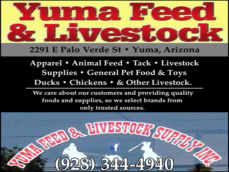 feed and livestock yuma county az