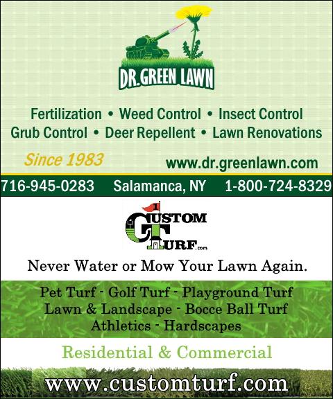 lawn care cattaraugas county ny
