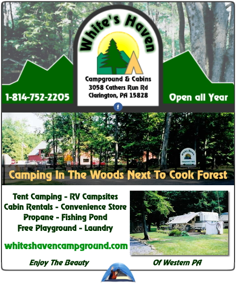 campground, fishing, camping, swimming, allegheny county, pa