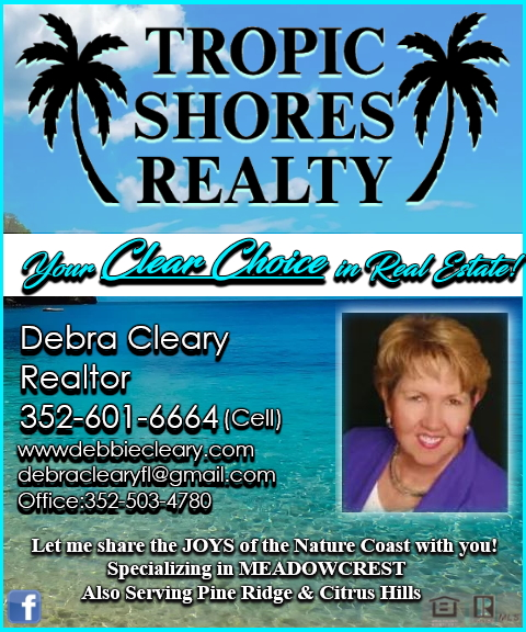 debra cleary realtor, citrus county, fl
