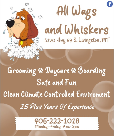all wags & whiskers, park county, mt