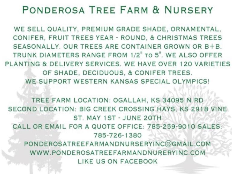 ponderosa tree farm and nursery, trego county, ks