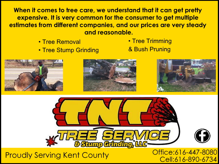 tnt tree service, kent county, mi
