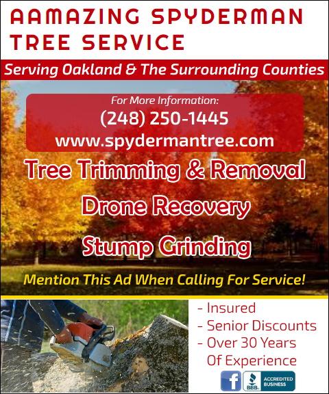 aamazing spyderman tree service, oakland county, mi